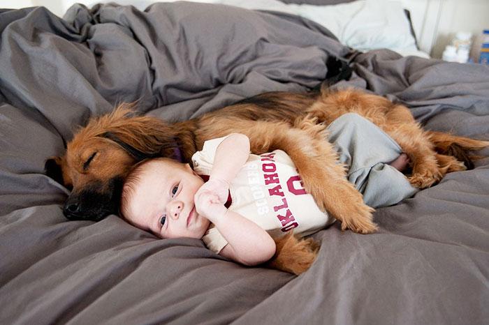 20 милых фото о любви детей и домашних животных